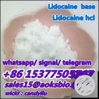 Picture of lidocaine powder ,lidocaine price, lidocaine vendor,lidocaine supplier, lidocaine factory